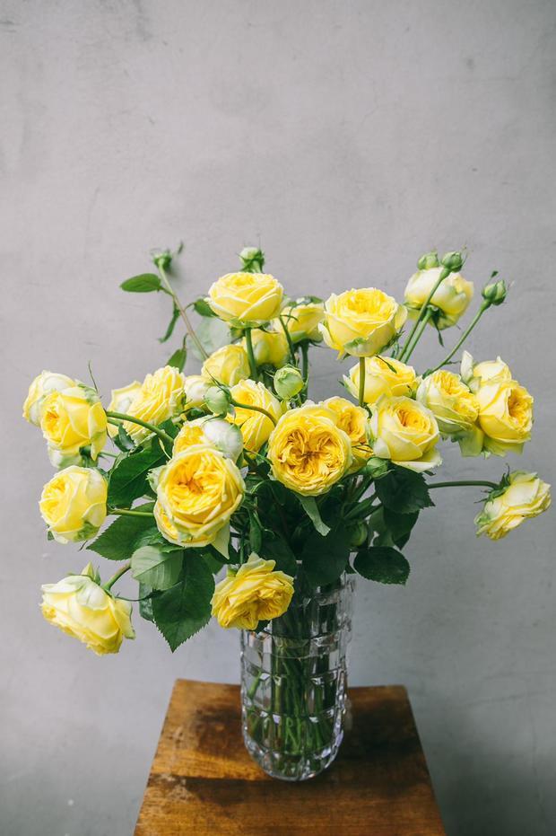 קריסטל עם ורד שדה צהוב