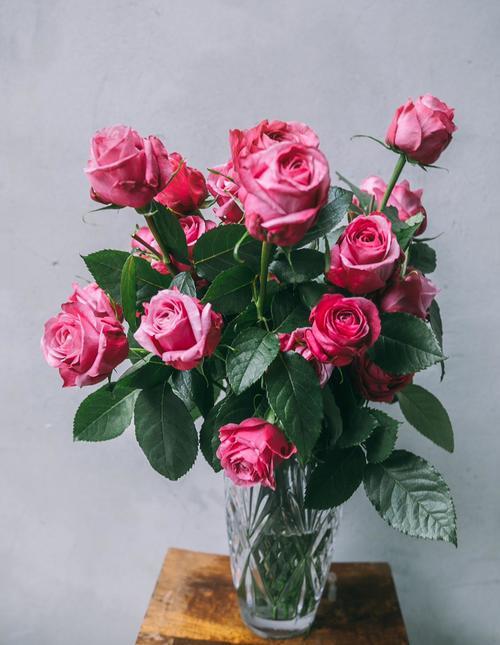ורד אנגלי באגרטל קריסטל